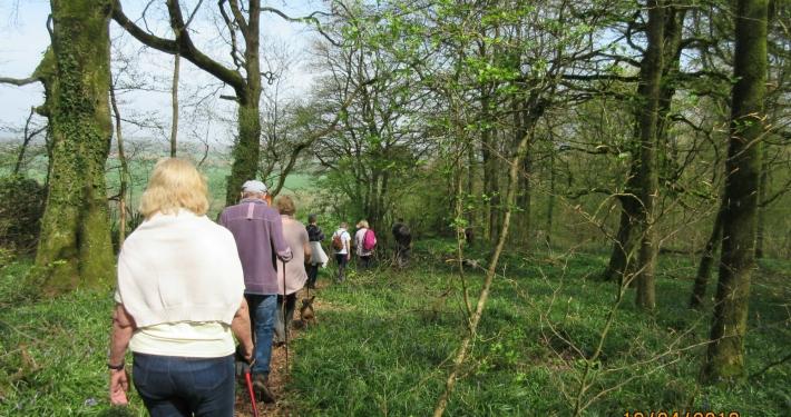 Village walk, Breach Wood
