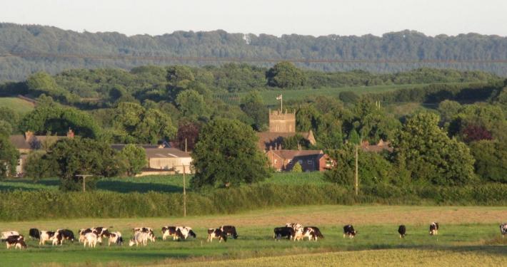 Wanstrow across the fields